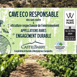 RSE : La démarche de Responsabilité Sociétale de CASTELBARRY