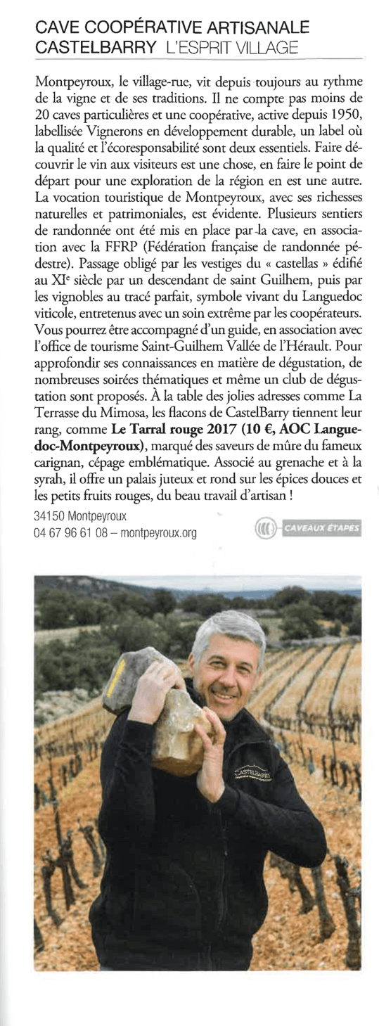 Article Terre de vins Castelbarry