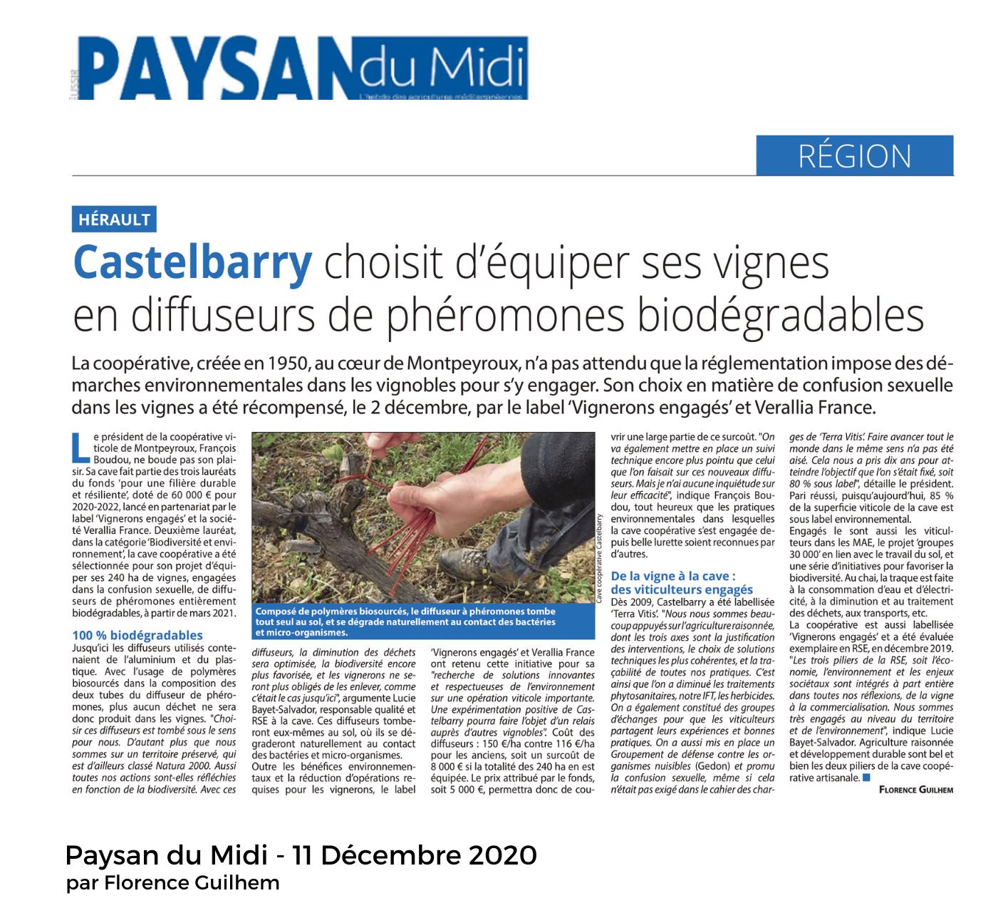article Paysan du midi Castelbarry montpeyroux